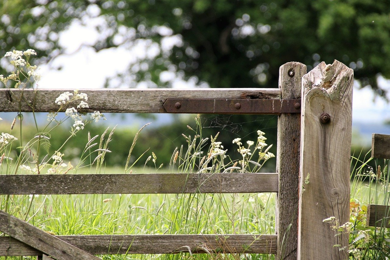 farm gate, countryside, landscape-1591383.jpg
